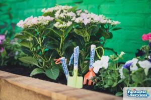 John Burn's school - Fantastic Gardeners project pictures 36