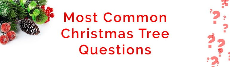 Christmas Tree Questions Banner