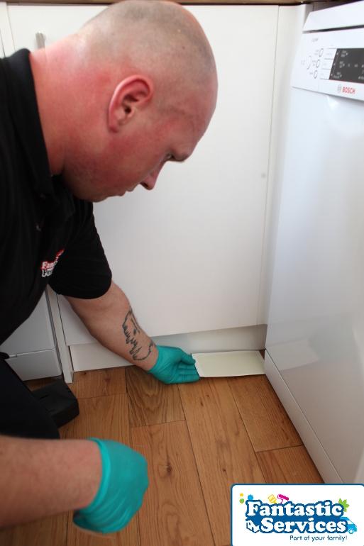Pest control job 7