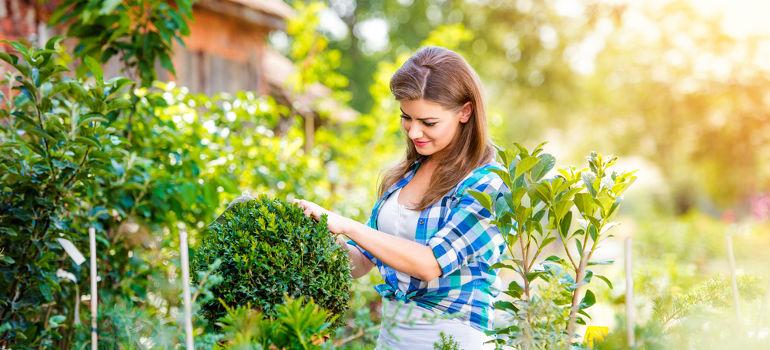 gardening trends for 2018