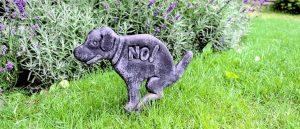 Garden Statue of Dog