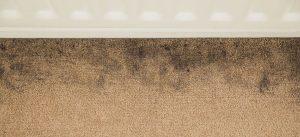 dirty carpet edges