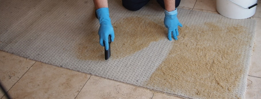 Dry carpet cleaning method