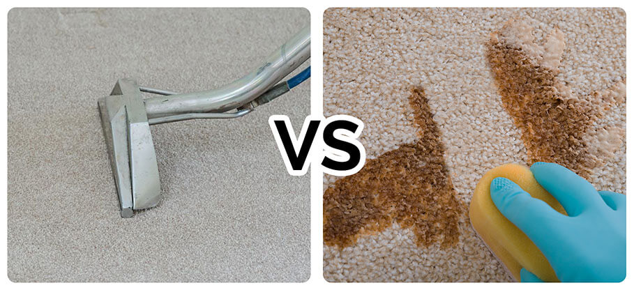 Do it yourself carpet cleaning vs professional carpet cleaning