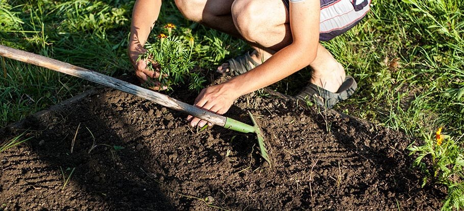 Help How To Level Soil Before Laying Turf Fantastic Services Blog