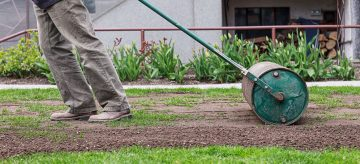 a gardener shows how to level out a bumpy lawn