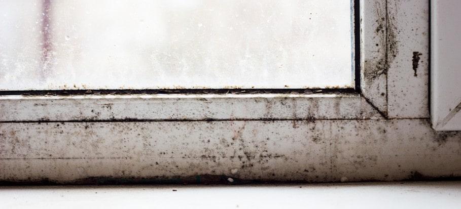 Mould on upvc window frames