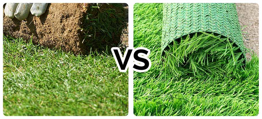 artificial grass vs turf