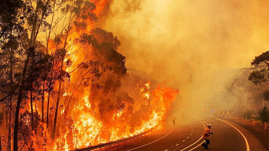fire in australian forest