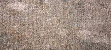 mould-on-carpet