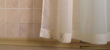 mould on curtains