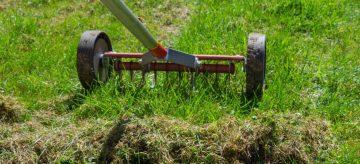 scarifying lawn