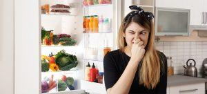 smelly fridge