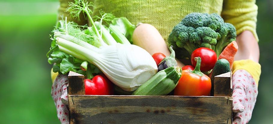 woman holding garden vegetables