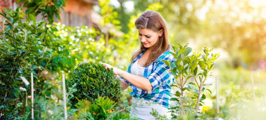The benefits of gardening for your health and well-being