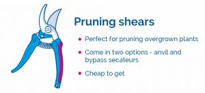 drawing of pruning shears