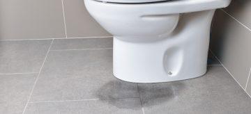 toilet leaking