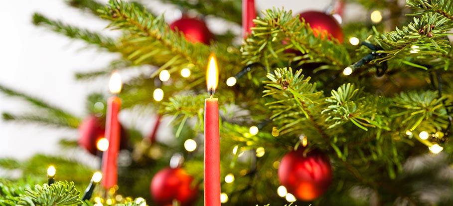 close shot of christmas tree