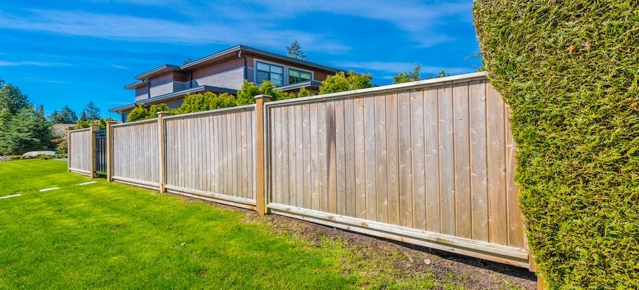 featherboard or close board fencing