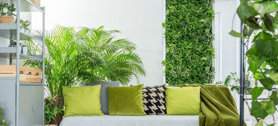 indoor green wall inside modern room