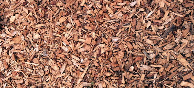 wood chips mulch