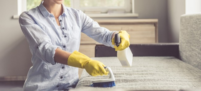 Woman cleaning sofa.